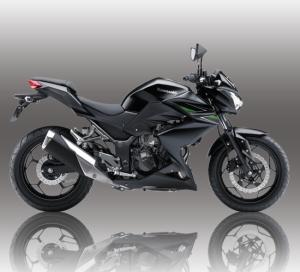 Spesifikasi Harga Kawasaki Ninja Z250